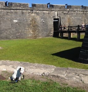 Archie at the Fort
